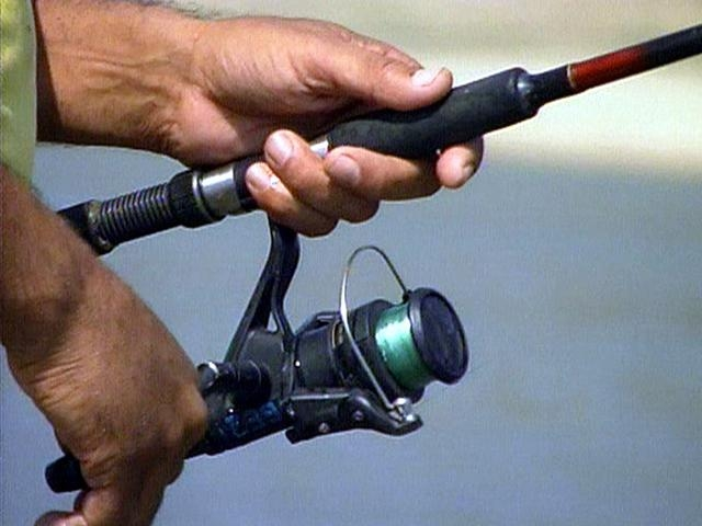Fish license free in florida freshwaters april 2 3 for How much is a non resident fishing license in florida