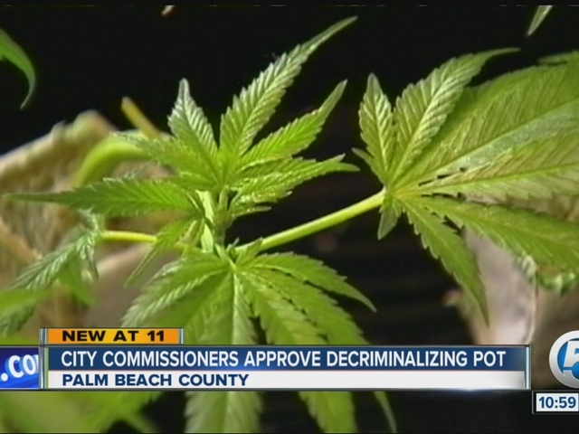 an argument in favor of legalizing marijuana in the humbolt country The legalization of medical marijuana in the while the national government's policy towards marijuana is still in favor of legalizing marijuana may.