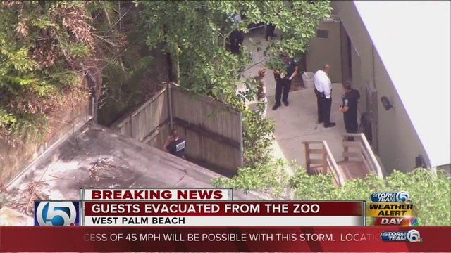 Zoologico West Palm Beach The Best Beaches In World