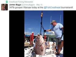 Fishermen catch 347-pound monster grouper
