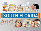 Find some fun: Taste & See South Florida