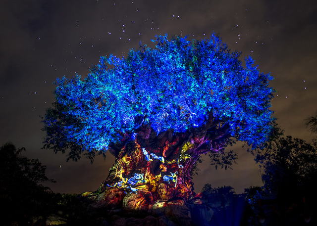 The Tree Of Life At Disneys Animal Kingdom Lights Up Wednesday May 24 2017 In Celebration New Land Pandora World Avatar As It Glows