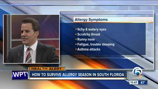 Dr. Soria: Surviving allergy season