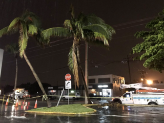 Storms cause scattered damage in West Palm Beach