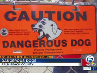 C5: Dog bites high, but 'dangerous dogs' low