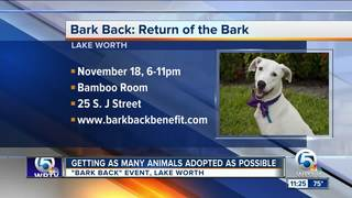 Bark Back benefit in Lake Worth on Nov. 18