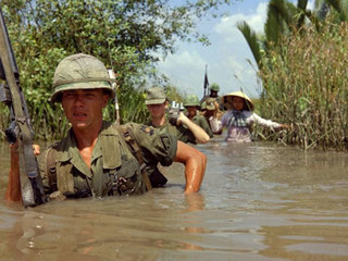 Parasite from Vietnam may be killing war vets