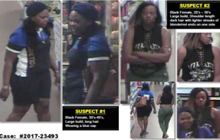 Walmart theft suspects sought