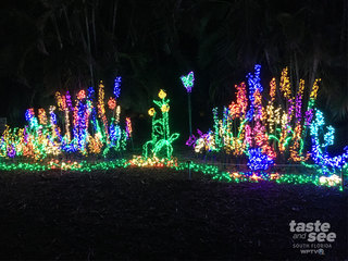 St. Lucie mom loves unique holiday illumination