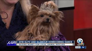 Glitz and Glamour Homecoming Dance in Jupiter