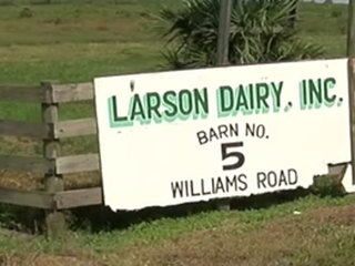 Group claims dairy farm owner knew of cow abuse