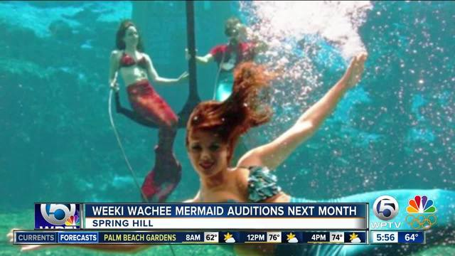 Weeki Wachee is looking for new mermaids