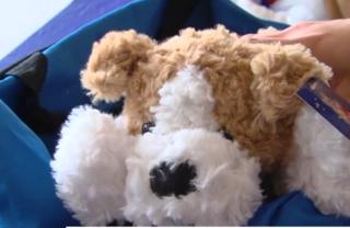 Lynn Univ. packs 'comfort cases' for foster kids