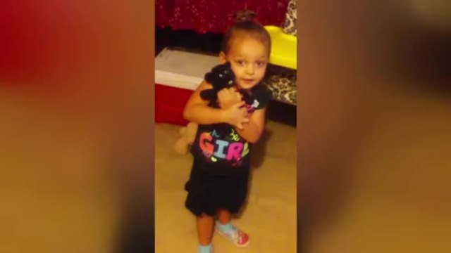 3-year-old mauled to death by family-s newly adopted dog