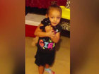 3-year-old mauled to death by family's new dog