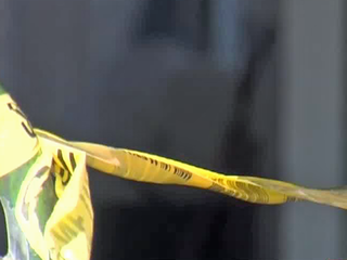 I-95 suspect, victim identified