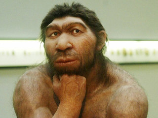 Mysterious species interbred with modern humans