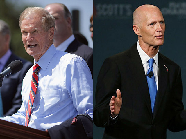 Nelson concedes Florida Senate race to Scott