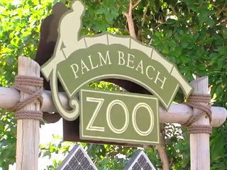 Mom reviews Boo at the Zoo