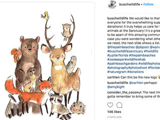 Busch Wildlife Sanctuary seeks more donations
