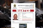 Investigators searching for arsonist