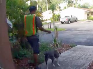Man suspected of burglary, stealing dog in Davie