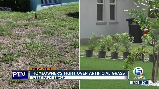 Backyard Fighting Videos west palm beach man fighting to keep artificial turf in his front