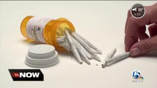 Jupiter council votes to ban pot dispensaries