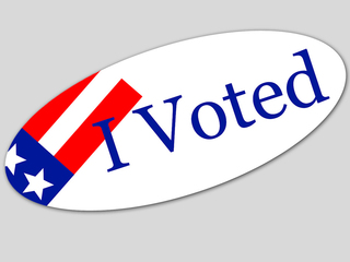VOTING 101: Your Florida ballot in plain English