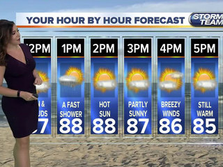 Partly sunny with elevated risk for rip currents