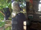 PBCFR crews rescue cockatiel stranded in tree
