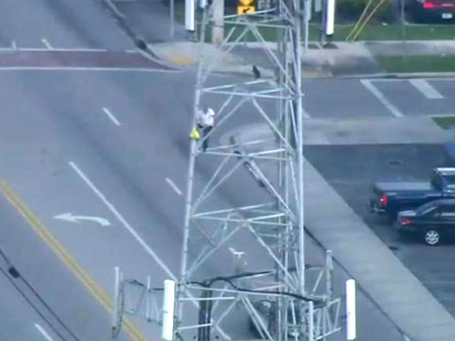 Man climbs cellphone tower in Hialeah