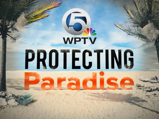 Protecting Paradise: Focus on the environment