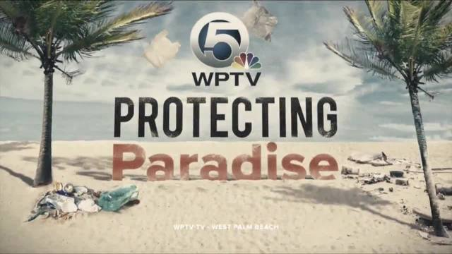 WPTV launches Protecting Paradise- a yearlong focus on environmental…
