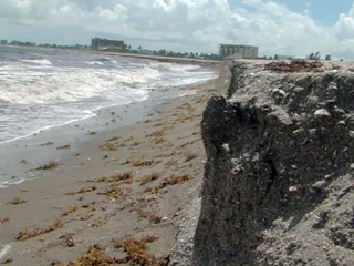 Are Florida beach projects worth the money?