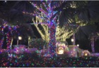 Jensen Beach mansion wows crowds with lights